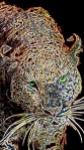 Glowing Cheetah