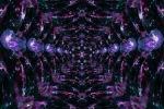 Purple Net