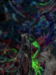 Journeys in Inner Space