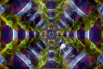 Serpentine Web2