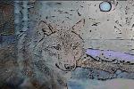 Wolf Night on Metal