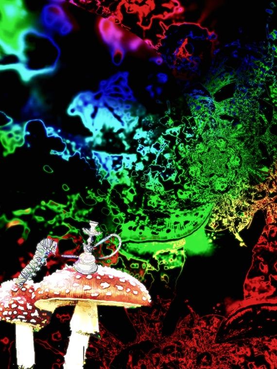 Wonderland Beckons (r)