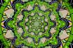 Heart Drum Mandala