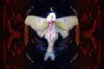 Moth Woman View