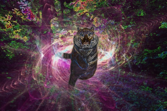 Tiger Warp (redux)